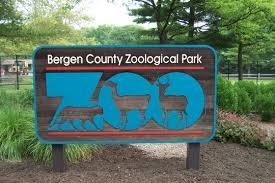 Bergen County Zoo III