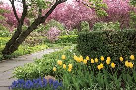Central Park Conservatory Garden IV