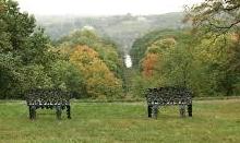 locust-grove-ii.jpg