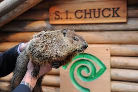 Day One Hundred and Thirty One: Meeting Staten Island Chuck at the Staten Island Zoo on Groundhog's Day,  February 2nd, 2019 (Revisited February 2nd, 2020)