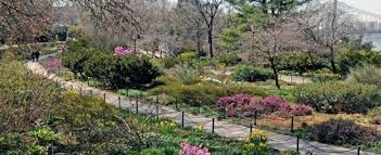 Fort Tryon Park IV